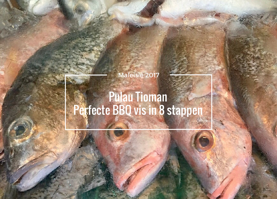 8 stappen voor de perfecte BBQ vis op Pulau Tioman