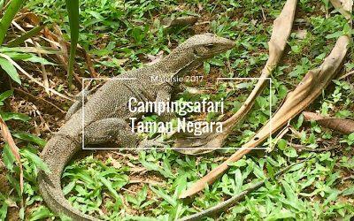 Campingsafari in het Mutiara resort, Taman Negara