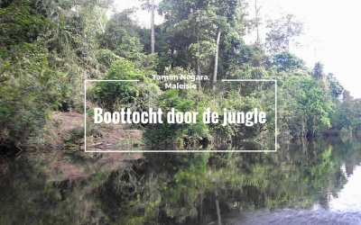 Taman Negara, boottocht door de jungle