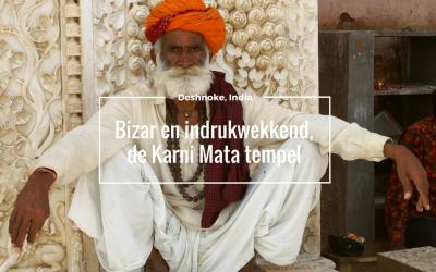 Bizar indrukwekkend, de Karni Mata tempel in India