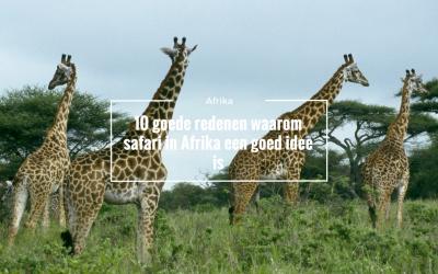 10 redenen waarom een safari in Afrika een goed idee is!