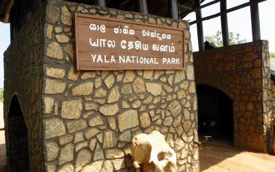 Op safari in Yala National Park, Sri Lanka