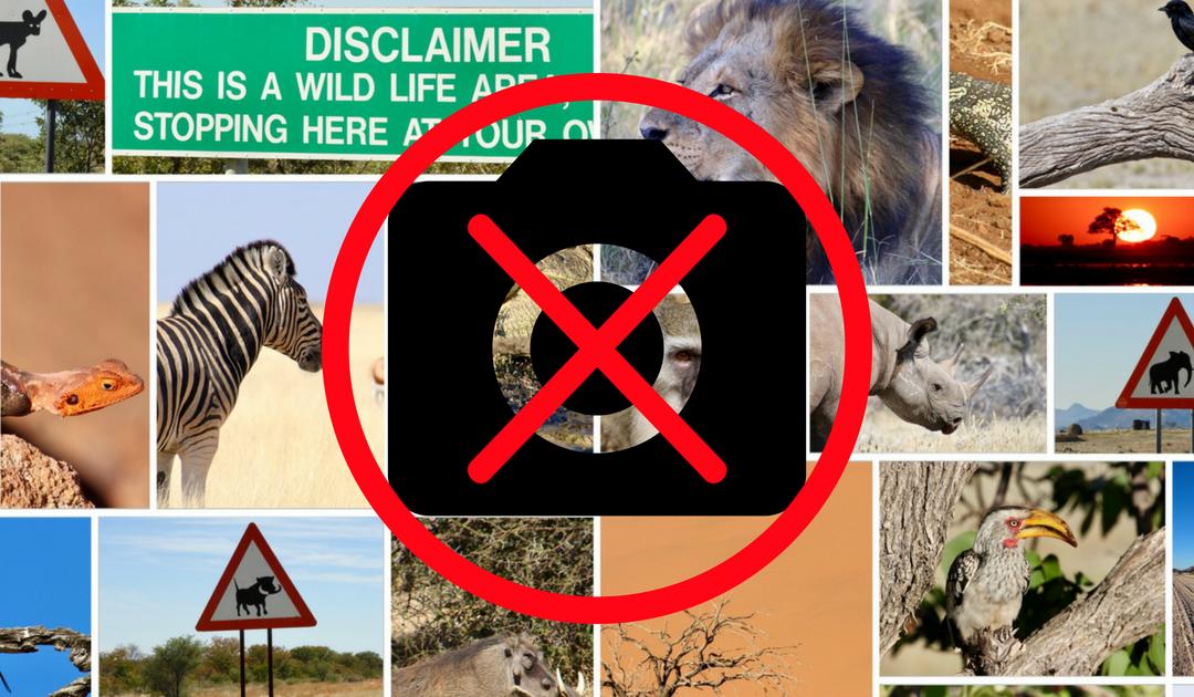 Hoe voorkom je dat je prachtige reisfoto's verloren gaan? Tips voor thuis en op reis