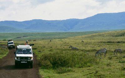 de Ngorongoro krater in Tanzania, ingesloten wild
